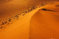 Namibia tra parchi e fantastiche esperienze